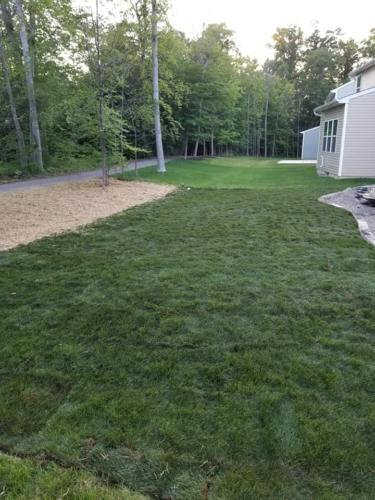 4 Lawn-after